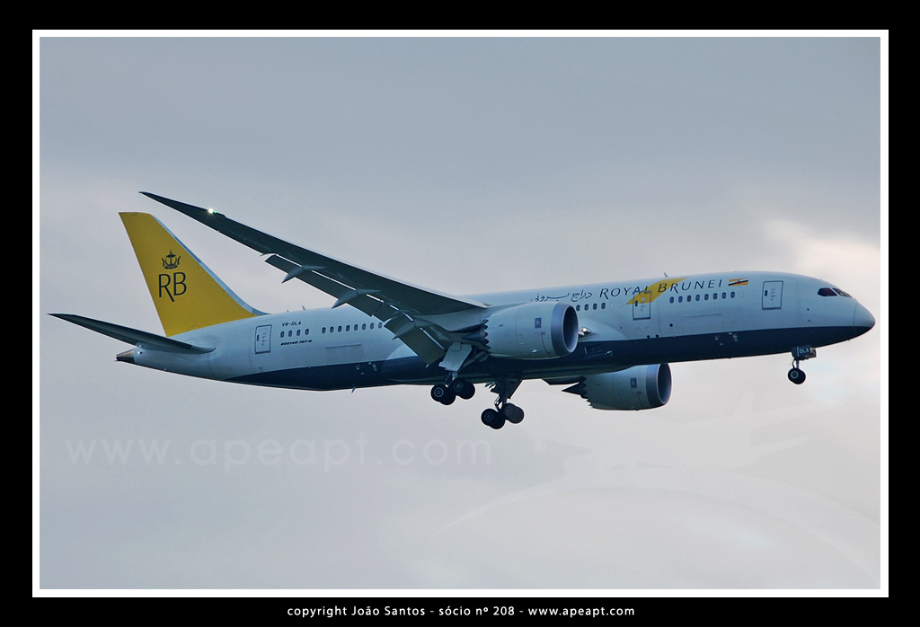 ROYAL BRUNEI AIRLINES B787 V8-DLA.jpg