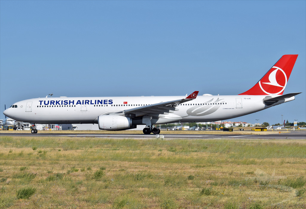 TURKISH AIRLINES A330 TC-LOC.jpg